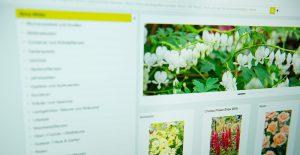 pflanzenbilder-datenbank
